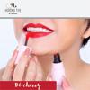 Son kem Elyza Liquid Lipstick - Hương Thị màu Đỏ Cherry